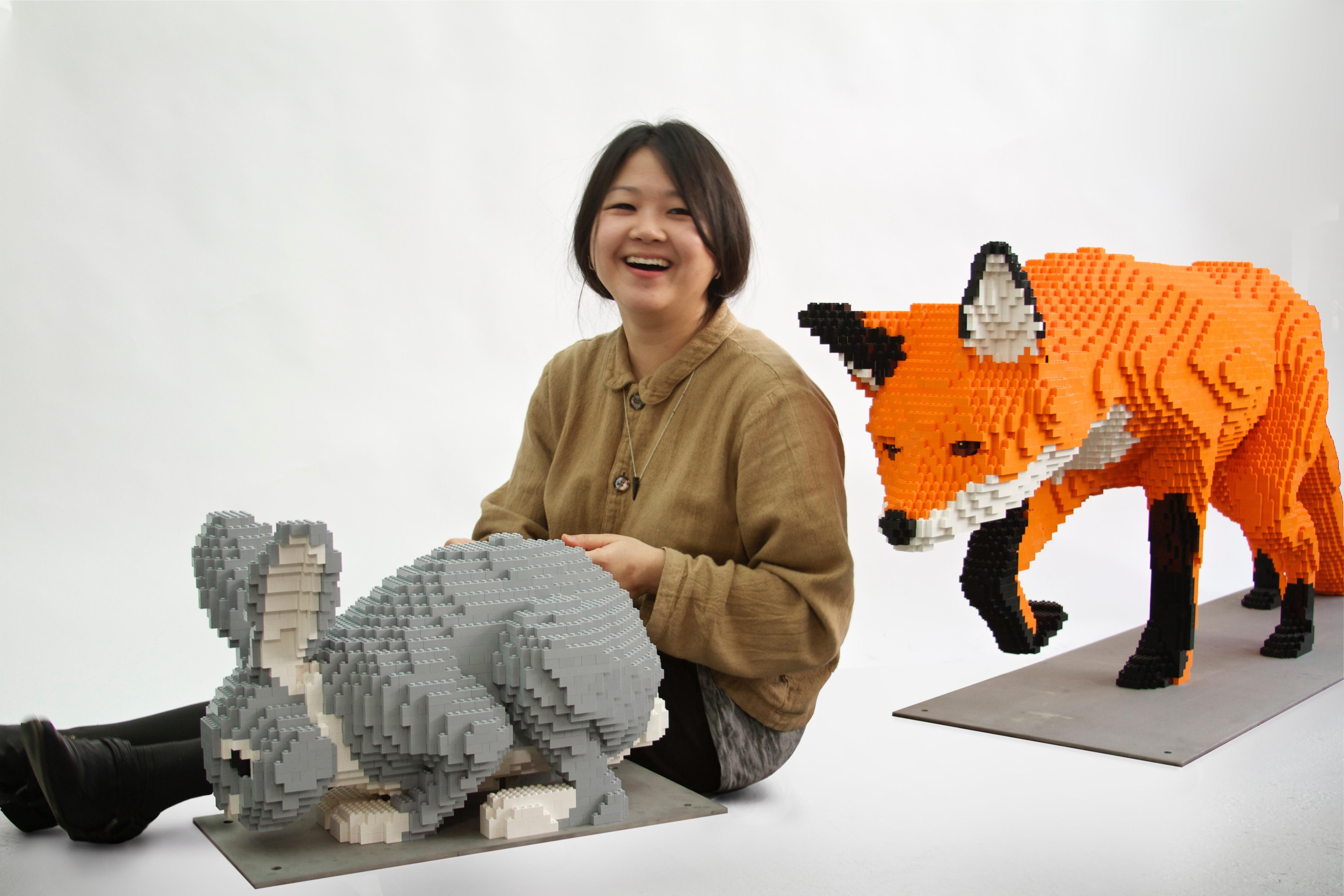 Fox and Rabbits 6 9