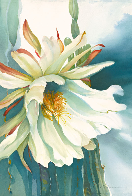 Red Barn Studio with Vada Baker- Nightingale Cactus Blossom Watercolor November 22 Image