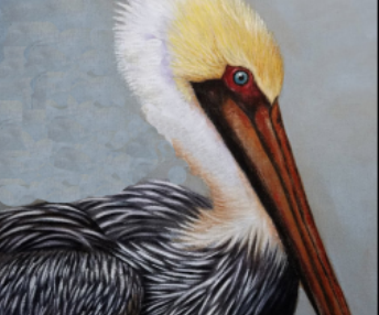 Red Barn Studio with Vada Baker- Brown Pelican Watercolor Image